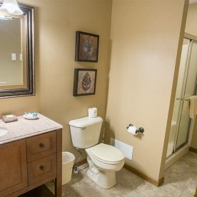 Bathroom in Room 6 with walk-in shower